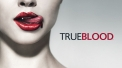 True Blood - free tv online from